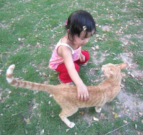 Abby and the friendly cat at the park