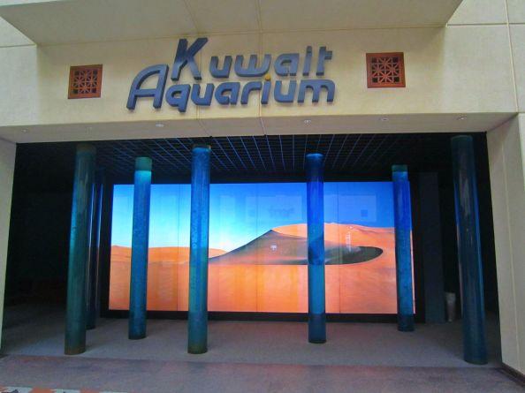 shiny entrance view